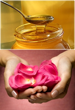 honey and roses